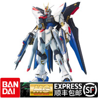 BANDAI 万代 HGD-148083 1/100 MG强袭突击自由敢达 SEED Strike Freedom