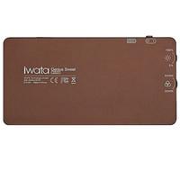 Iwata LED GS-01 摄像灯 棕色