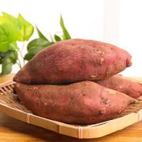 邦贡园 沙地红心蜜薯 净重9斤