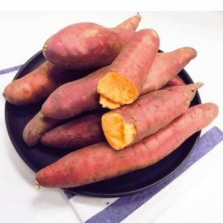 芮瑞 沙地红薯蜜薯
