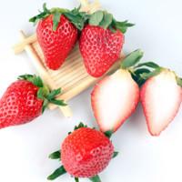 京东自营 山东章姬奶油草莓 约重250g 12-15颗 *4件