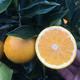 华赏 麻阳冰糖橙 4.5斤 *2件 19.9元包邮(双重优惠)