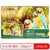 TANGO 天章 多彩天章 新绿4R 6寸 230G 高光相片纸 100张/包 *5件 54.75元(合10.95元/件)