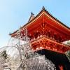 上海-日本名古屋5-7天往返含税机票+西瓜卡(可选元旦、春节班期) 1279元起/人(减后)