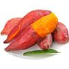 红薯新鲜香甜小番薯3斤包邮农家正宗手指甜心蔬果 14.9元
