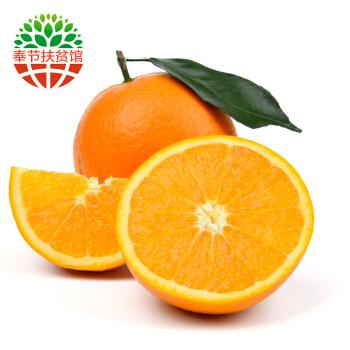 念橙果园 重庆奉节脐橙 橙子 6个试用装 *3件