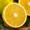 展卉 云南花皮冰糖橙 丑橙 5kg装 19.8元包邮(2人拼团)