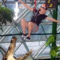 世界上第一家室内高空绳索冒险野生动物园!澳大利亚凯恩斯室内穹顶野生动物园