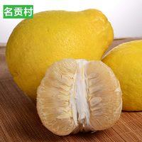 名贡村 容县沙田柚子 12斤 单果900-1250g
