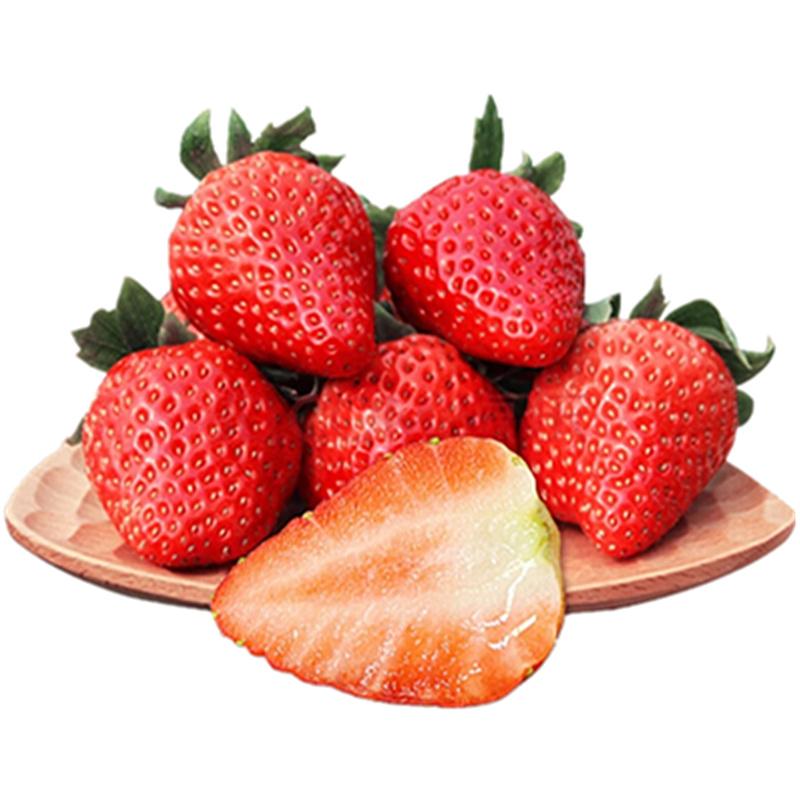 橙鲜恋 双流冬草莓 1500g