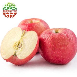秦渭 陕西特产 白水苹果