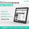 DASUNG 大上科技 13.3英寸显示器 1600*1200