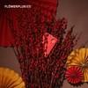 FlowerPlus 花加 红色银柳枝 新年装饰 39元包邮