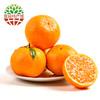 犁楚(Lichu)新鲜椪柑 芦柑时令水果现摘柑橘桔子 椪柑5斤装 9.8元