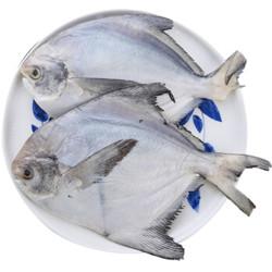 简单滋味 冷冻东海鲳鱼 400g 2条 22元一包