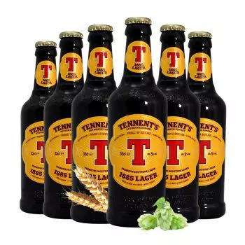 TENNENT'S 替牌 啤酒 330ml 6瓶 *3件
