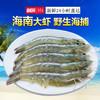 海享莱 野生鲜活海捕大虾 1650g 108元(需用券)