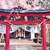 樱花季!上海-日本大阪/名古屋/北海道/高松/佐贺/茨城5-7天往返含税 799元起/人