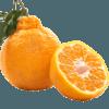 罗克珊 四川不知火丑橘 5斤 14.9元包邮(需用券)