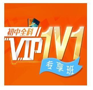 沪江网校 中小学名师1V1【2课时VIP定制】