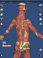 《3D Anatomy》iOS人体?#20113;?#25945;育类App