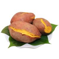 双品 鸡蛋黄红薯 中大薯 5斤