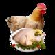 黄河畔 散养老母鸡 净重约1.1kg/只 *2件