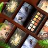 完美日记 X Discovery 十二色动物眼影盘 14g