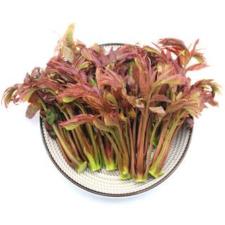 绿鲜知 香椿芽 150g