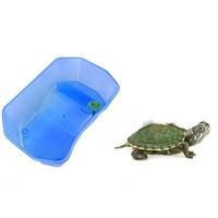 NOMOYPET 小乌龟缸 小号 送小乌龟+龟粮