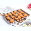 学厨 CHEF MADE 月饼烤盘饼干烤鸡盘13英寸浅烤盘烤架烤网套装组合WK9267 *3件 109.4元(合36.47元/件)