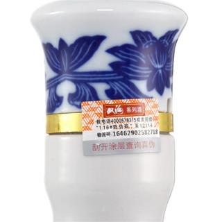 双沟 白酒 (瓶装、浓香型、42度、480ml)