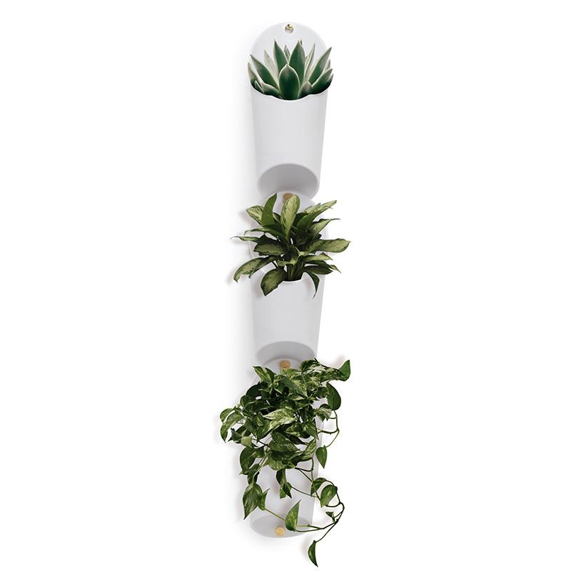 umbra 装饰挂墙绿植 (1010224-660、绿色、塑料、6层)