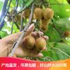 黄绿心猕猴桃新鲜奇异果弥猴桃水果30g-60g 2.5kg 19.8元