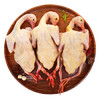 京东扶贫飞翔鸽 净膛900g/3只装 散养青年鸽 灰王鸽鸽子肉非乳鸽  烧烤优选礼盒装