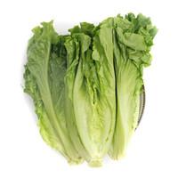 绿鲜知 生菜 400g
