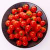 枝纯糖果番茄 串收粒采西红柿 双杯装 320g 新鲜水果