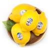 新奇士Sunkist 美国进口柠檬一级果 8粒 单果约80-100g 新鲜水果