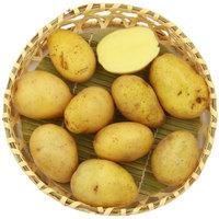 绿鲜知 迷你土豆 约1kg 烧烤食材 新鲜蔬菜