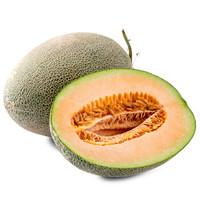 京觅 西州蜜瓜 2粒装 单果1.25kg以上 *5件