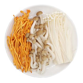 绿鲜知 菌菇三丝组合(虫花草+蟹味菇+金针菇) 300g