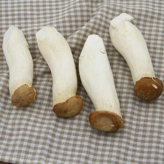 绿鲜知 杏鲍菇 350g