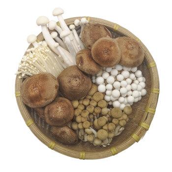 绿鲜知 菌菇拼盘 400g