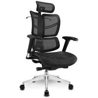 Ergomax 迩高迈思 Evolution畅享版人体工学电脑椅 黑色