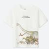 0点:童装/男童 (UT)Discovery Channel印花T恤 414537 优衣库UNIQLO 59元