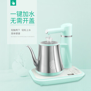 QLT 科立泰 QLT-T07 电热水壶 (0.8L、绿色)
