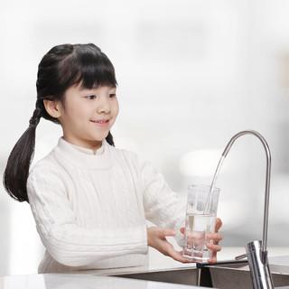 CHANITEX 佳尼特 大白系列 反渗透纯水机