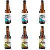 8wired 啤八怪 超导体双倍ipa/酒花ipa (2口味6瓶、330ml)