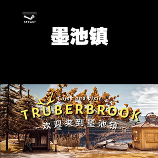 Steam 游戏 墨池镇 Truberbrook