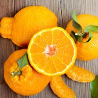 XIANGUOLAN 鲜菓篮 丑橘 丑柑 (2kg)